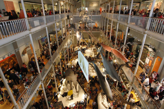 2012 was the museum's busiest year yet